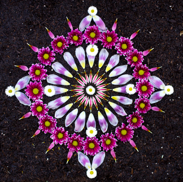 laughingsquid.com/beautiful-flower-mandalas-by-kathy-klein